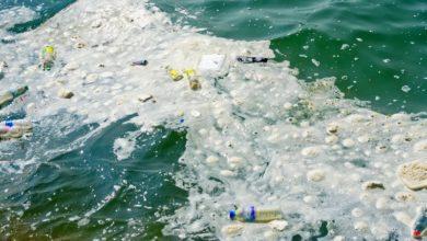 Quais são as causas da poluição da água?
