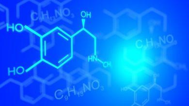 Saiba o que são isômeros e suas funções