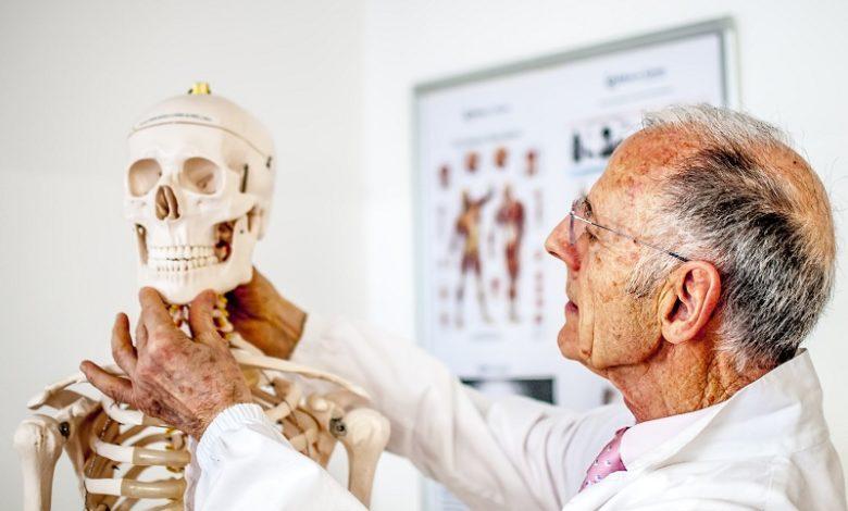 Quais são as estruturas ósseas em humanos?